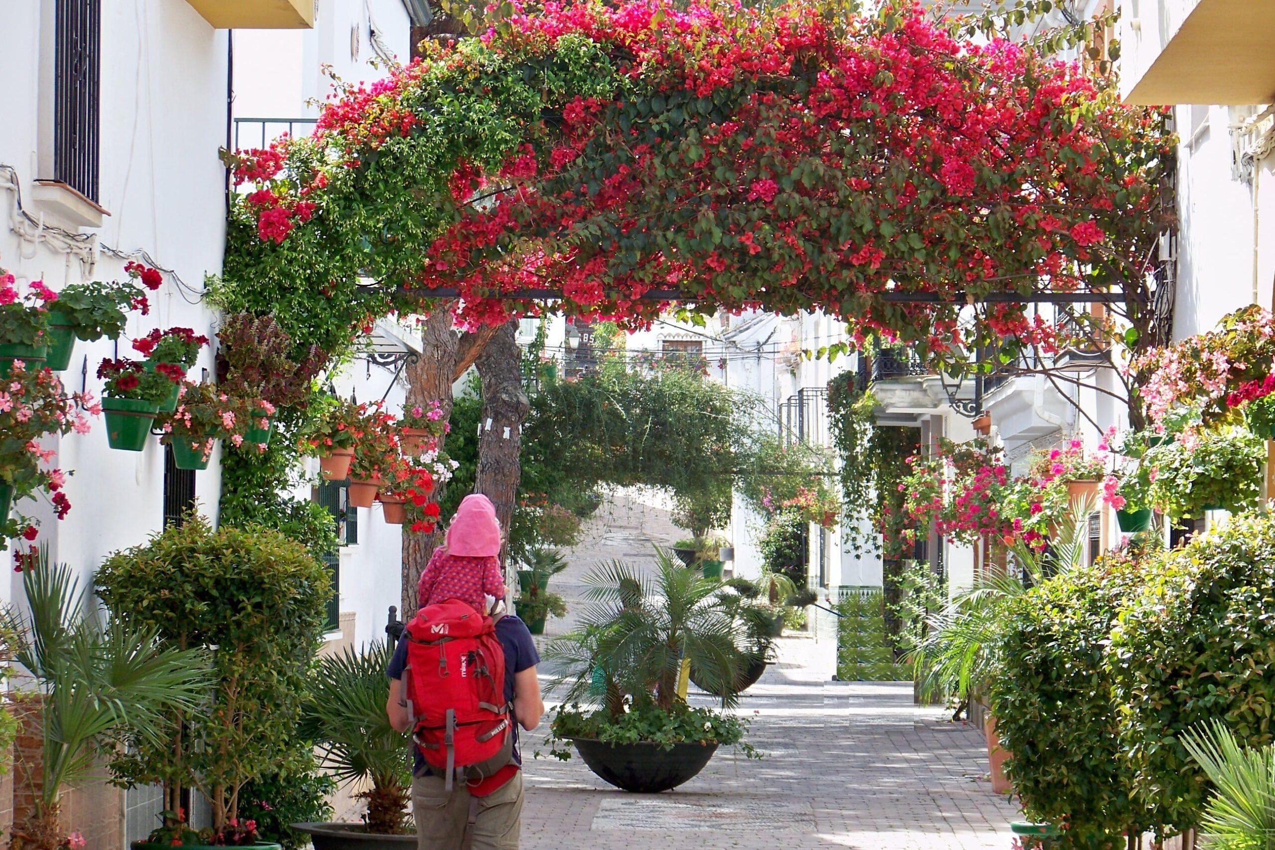 Conoce la gastronomía, deporte, cultura, turismo interior y mucho más de Estepona