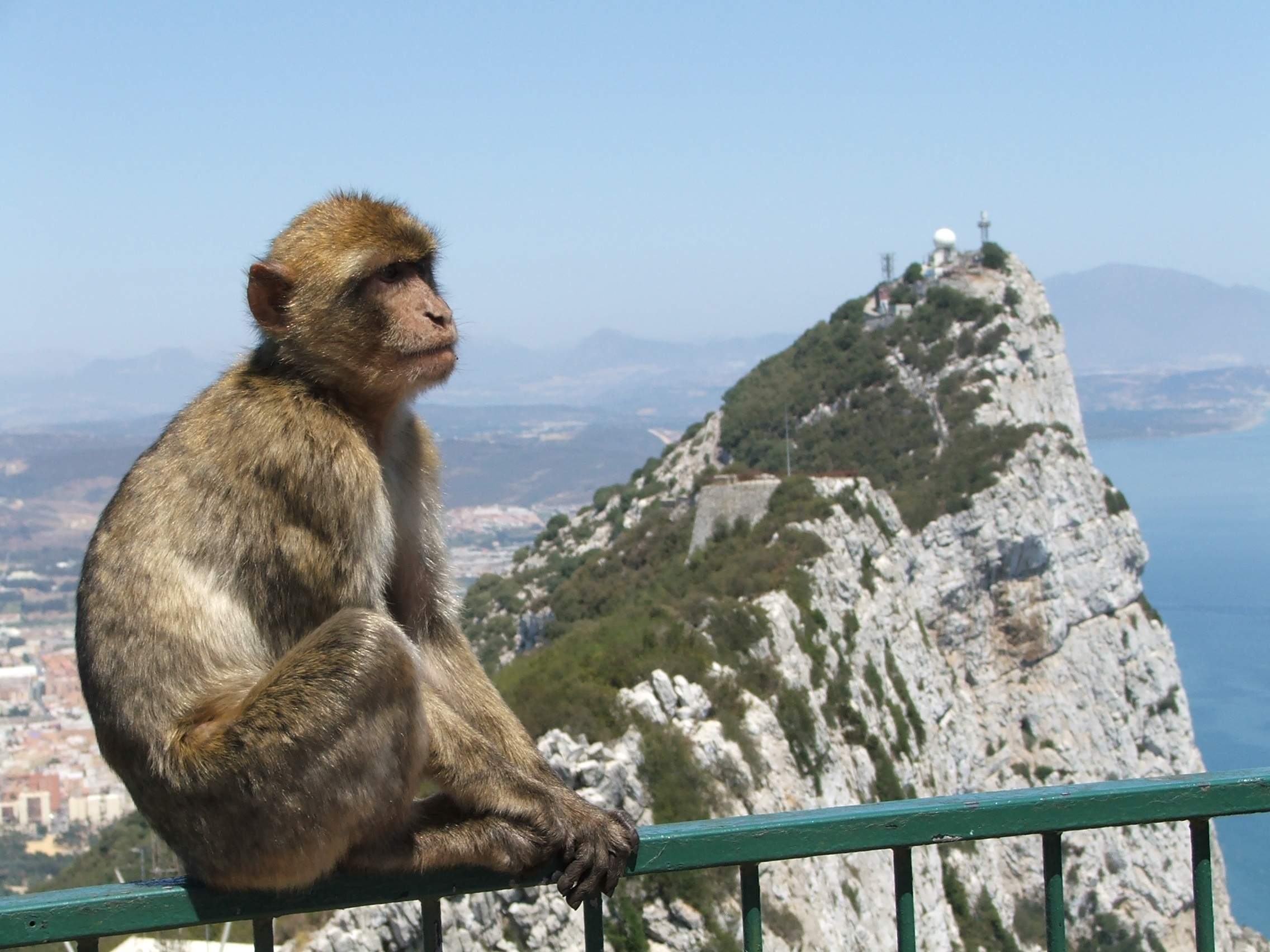 Visit Gibraltar with Haro Rent A Car Hire Car Services